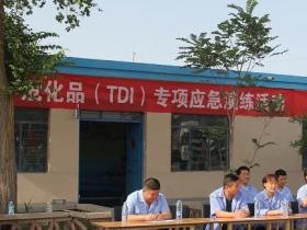TDI报警器价格哪个厂家便宜?