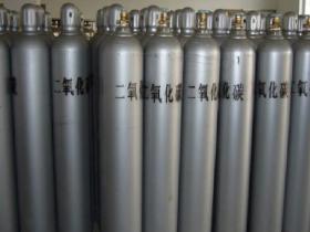 每日促销手持式保鲜行业专用二氧化碳气体报警器-红外线二氧化碳浓度报警仪品牌