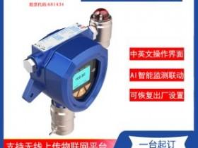 如何排除可燃气体检测仪的故障