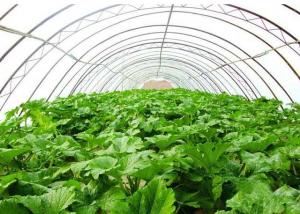 大棚种植行业专用二氧化碳气体报警器