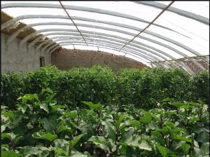 二氧化碳气体报警器在农业中的应用