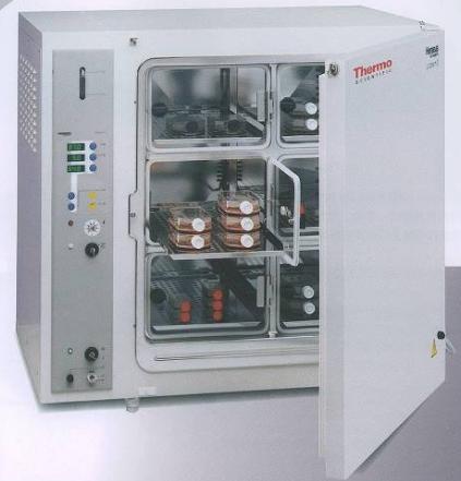 co2培养箱专用二氧化碳报警器-医疗二氧化碳培养箱检测仪